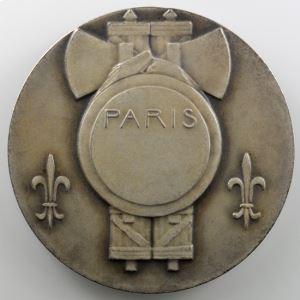 DAMMANN P.M.   Médaille en argent  50mm   PARIS    SUP/FDC