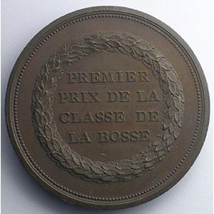 DESPUJOL   Médaille en bronze  51mm   Valenciennes    SUP