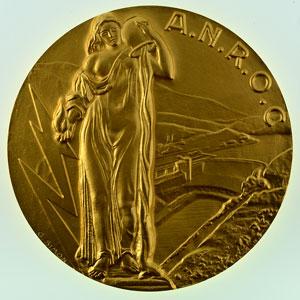 G. Simon   Usine d'électricité de Metz, Régie municipale   Médaille en bronze doré 68mm   1969    FDC