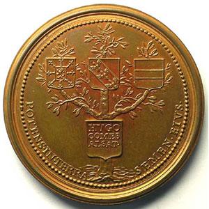 Hugues   bronze   47,5 mm    SUP