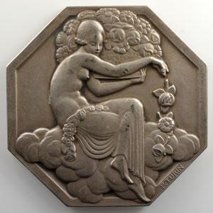 Turin Pierre   Exposition Internationale des Arts Décoratifs et Industriels Modernes - Paris 1925   Médaille octogonale en argent  60mm    SUP